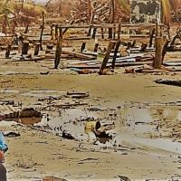 América Latina será una de las regiones más afectadas por el Cambio Climático